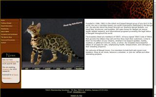 The International Bengal Cat Society - TIBCS