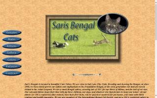 Sari's Bengals