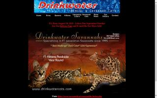 Drinkwater Cattery