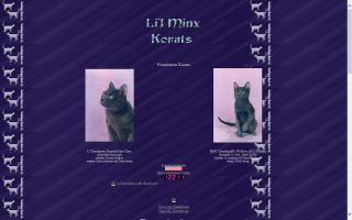 Li'l Minx Korats