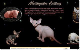 Abeitagatos Sphynx Cattery