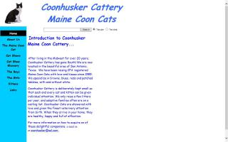 Coonhusker Cattery