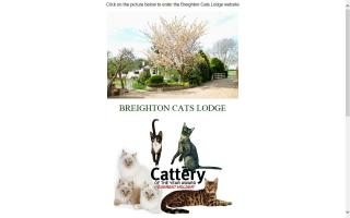 Breighton Cats Lodge
