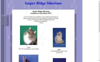 Jasper Ridge Siberians