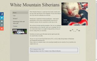 White Mountain Siberians