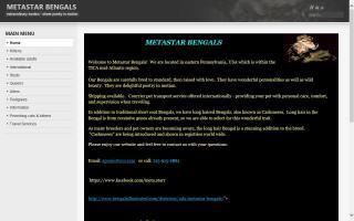 Metastar Bengals