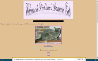 Déchéma's Burmese Cats