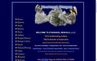 StarAngel Bengals