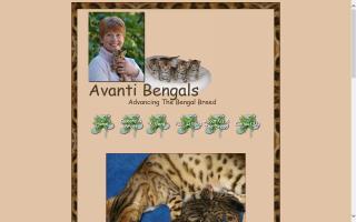 Avanti Bengals