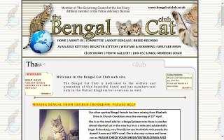 Bengal Cat Club, The