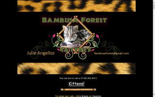 Bambusa Forest Cattery
