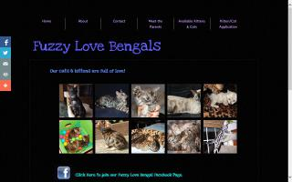 Fuzzy Love Bengals