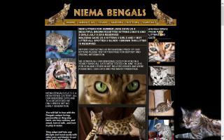 Niema Bengals