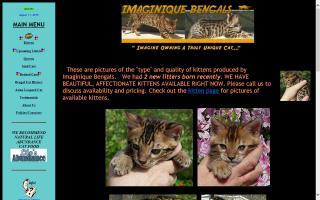 Imaginique Bengals