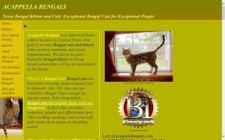 Acappella Bengals