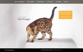 Tijah Cattery