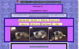 Cayugafarm Cattery