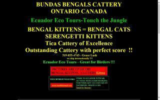 Bundas Cattery