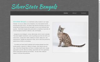 SilverState Bengals