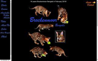 Brockenmoor Bengals
