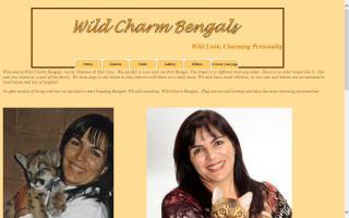 Wild Charm Bengals