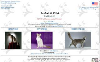 Su-Bali & KLM