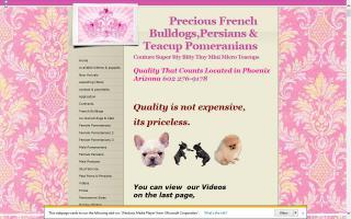 Precious Poms & Persians