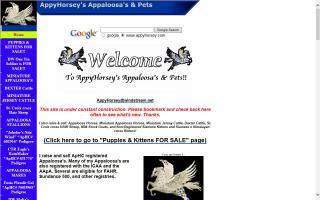 AppyHorsey's Appaloosas & Pets