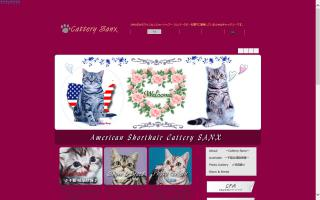 Sanx Cattery