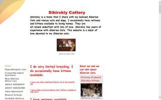 Sibirskiy Siberian Cats