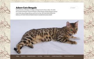 Adore Cats Bengals