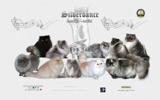 Silverdance Persians