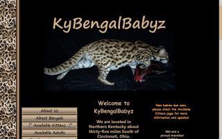 KyBengalBabyz