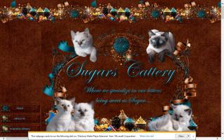 Sugars Cattery