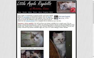 Little Apple Ragdolls