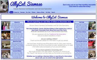 AllyCat Siamese