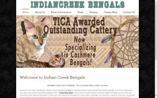 Indian Creek Bengals