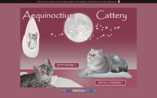 Aequinoctium Cattery