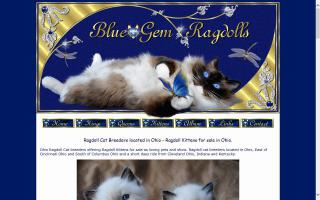 Blue-Gem Ragdolls