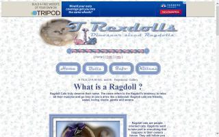 T Rexdolls Cattery