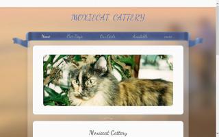 Moxiecat Cattery