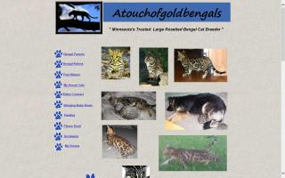 Atouchofgold Bengals