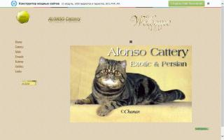 ALONSO Cattery