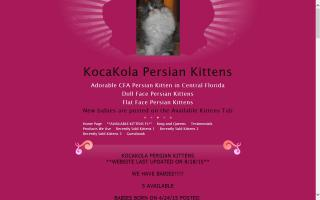 KocaKola Persian Kittens