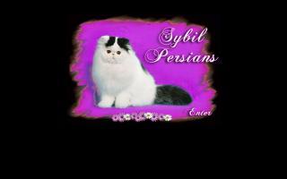 Sybil Persians