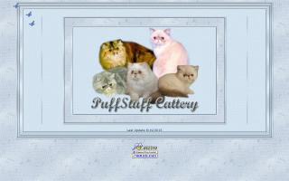 PuffStuff Cattery