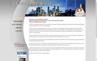 SG Persians & Exotics