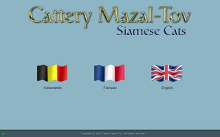 Cattery Mazal-Tov