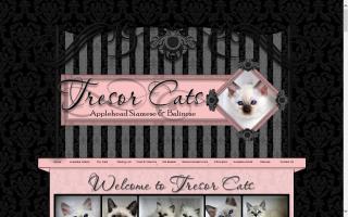 Tresor Cats