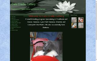Cats Cradle Cattery
